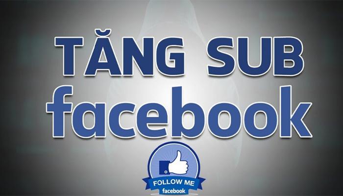 Dịch Vụ Tăng Follow Facebook Giá Rẻ - Hack Sub FB An Toàn
