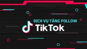 Dịch Vụ Tăng Follow Tik Tok - Mua Follow Tik Tok Giá Rẻ 5