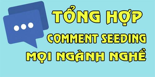 Những mẫu Seeding Comment Facebook thường dùng nhất