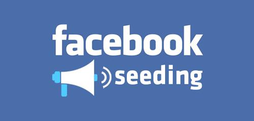 Seeding Comment Trên Facebook Là Gì?