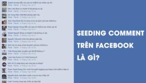 Một Đoạn Seeding Comment Trên Facebook